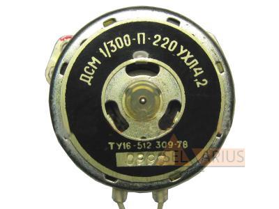 ДСМ-1/300П-220в фото 1